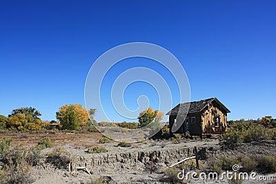 Landscape with Old Shack