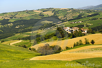 Landscape in the Oltrepo Pavese (Italy)