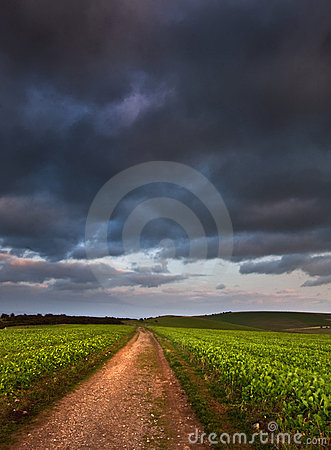 Landscape path through fields dramatic sky