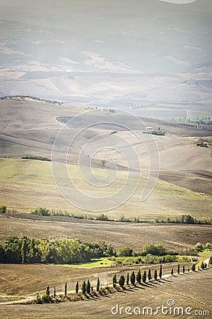 Landscape Pienza