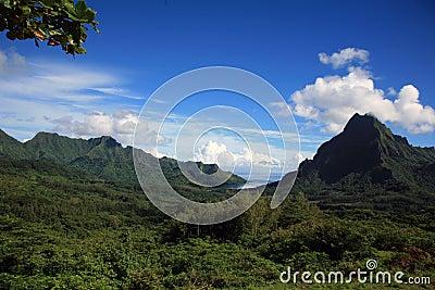 Landscape Polynesia