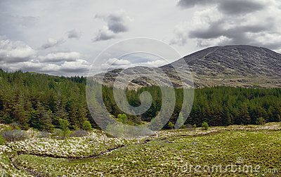 Landscape the Ring of Kerry in Ireland