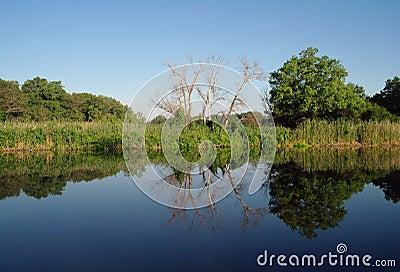 Landscape,river .