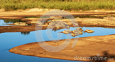 Landscape of riverbed in Africa