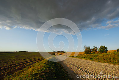 Summer landscape with a road