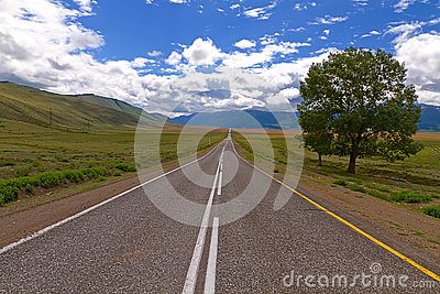 Altai: road steppe mountains