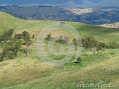 Landscape rolling hills in Australia