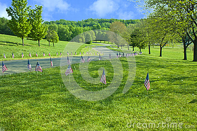 American Flags Line The Raod On Memorial Day