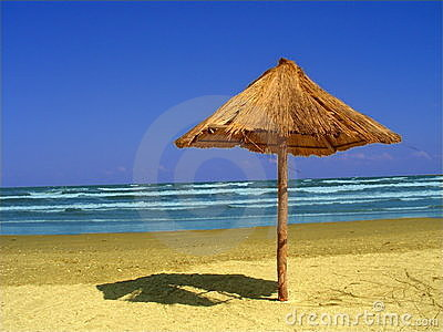 Landscape at the seaside