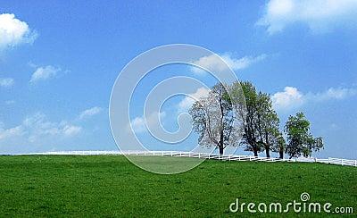 Landscape  - separation