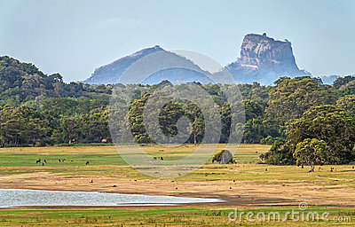 Landscape with Sigiriya Rock