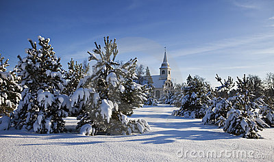 Landscape with snow, fir trees and church