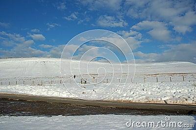 Landscape Snowy