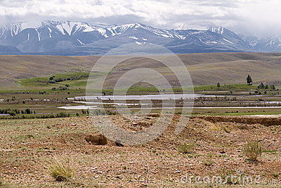 Altai landscape: steppe mountains