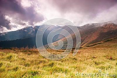 Landscape with sunrays
