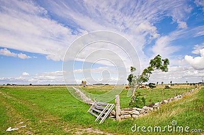 Landscape in Sweden