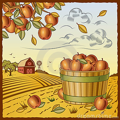 Free Landscape With Apple Harvest Royalty Free Stock Photography - 16334047