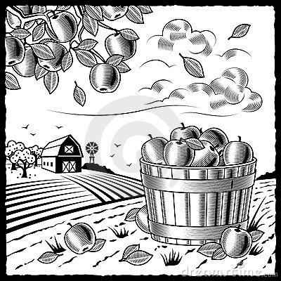 Free Landscape With Apple Harvest Black And White Royalty Free Stock Photos - 18201938