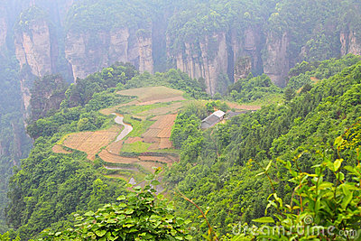 Landscape in Zhangjiajie of China