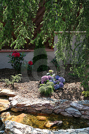 Landscaped domestic garden