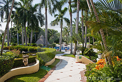 Landscaped tropical gardens