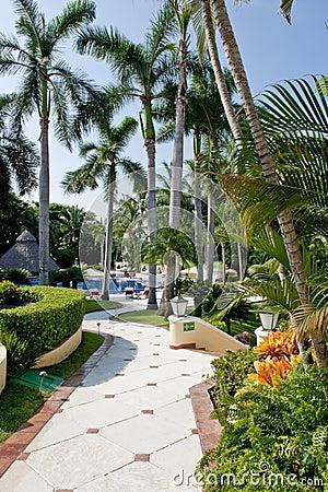 Landscaped tropical villa