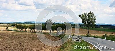 Landscapes road