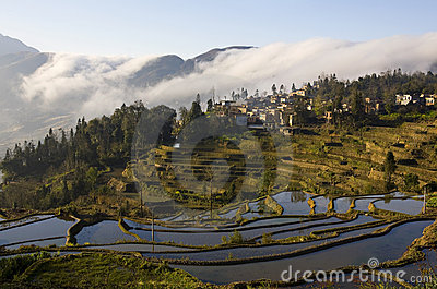 Landscapes of Yuanyang
