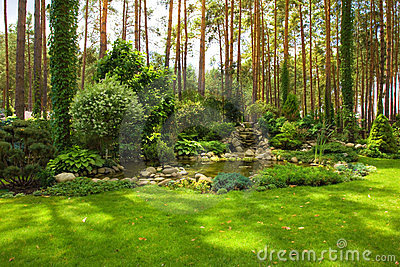 Landscaping in the garden. Pond.
