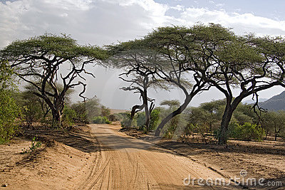 Landschap 005 van Afrika