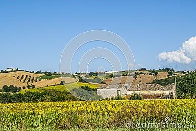 Landschap dichtbij Fermo