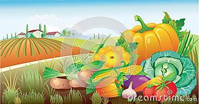 Landschap met een groep groenten