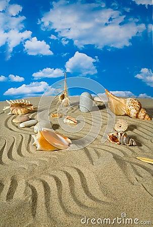 Landschap met zeeschelp en stenen op hemel