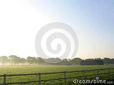 Landschap in mist