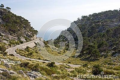 Landschap van Mallorca