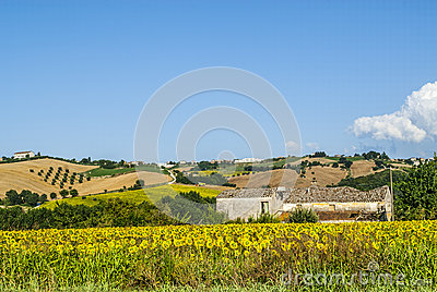 Landskap nära Fermo