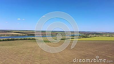 Landwirtschaftliche Felder am Ufer eines Teiches stock footage