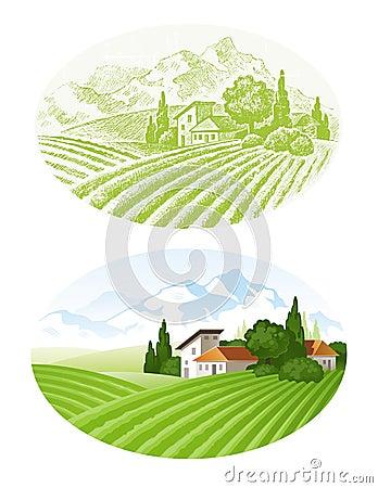 Landwirtschaftliche Landschaft