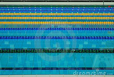 Lane lines of a swimming pool