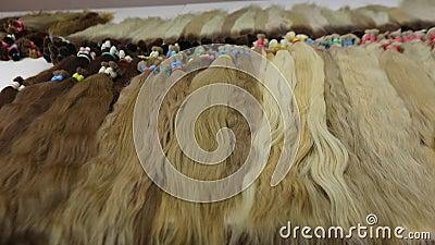 Lange mooie vrouwelijke haren, natuurlijke haaruitbreidingen, kunstmatig lang vrouwelijk haar in lichte tinten stock video