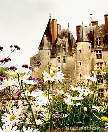Langeais castle -Loire valley