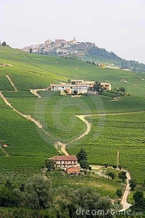 Langhe district, Italian vineyards