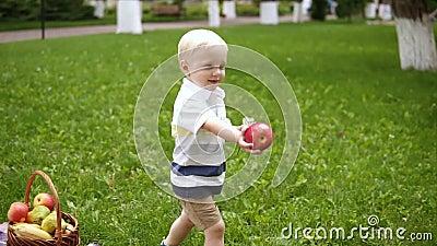 Langzame motie van een blondy jongen die op een groen gras lopen Neemt een rode appel van picknickmand en geeft het aan zijn het  stock footage