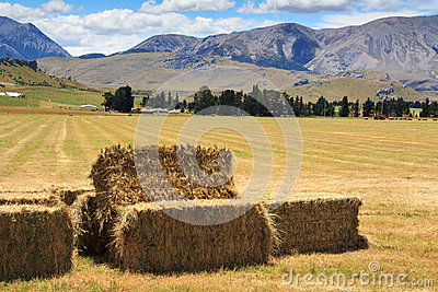 Lanscape with haystacks