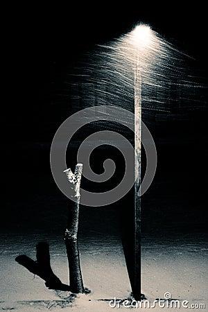 Free Lantern Stock Image - 7015361