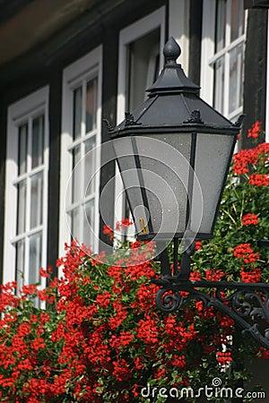 Lantern with geraniums