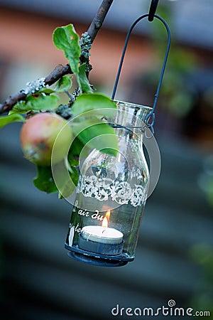Lantern hanging from appletree
