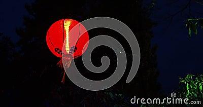 Lanterna cinese rossa video d archivio