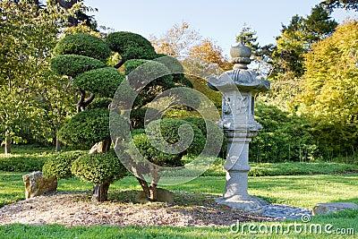 Lanterne et arbres en pierre dans le jardin japonais image for Arbres jardin japonais