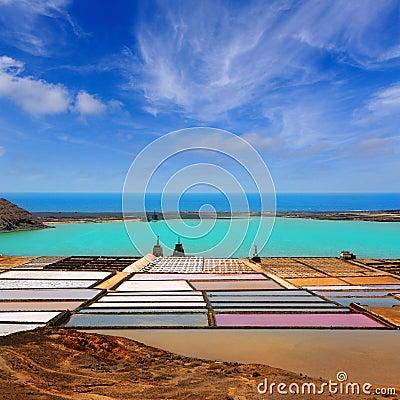 Free Lanzarote Saltworks Salinas De Janubio Royalty Free Stock Photo - 26595585